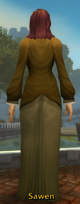 Archmage Robe back