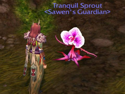 Seed of Tranquil Growth